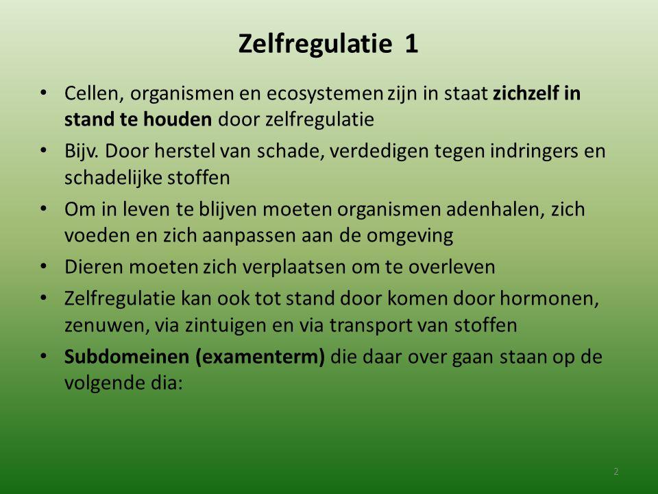 Zelfregulatie 1 Cellen, organismen en ecosystemen zijn in staat zichzelf in stand te houden door zelfregulatie.