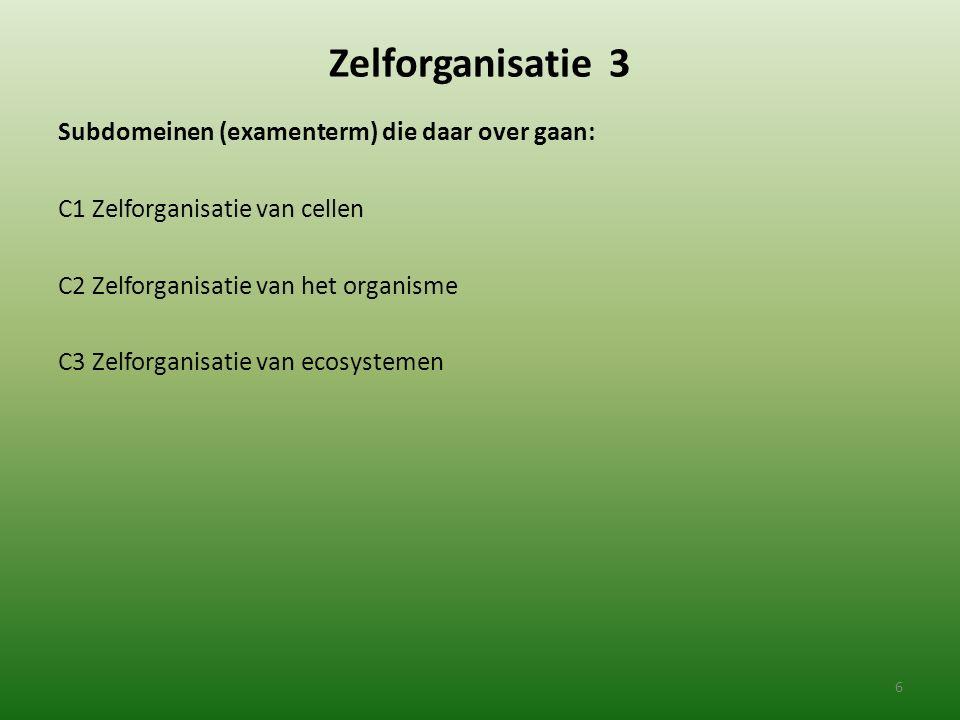 Zelforganisatie 3