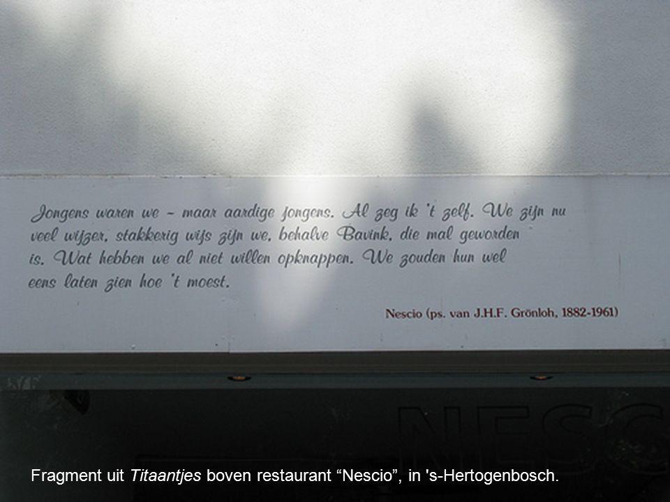 Fragment uit Titaantjes boven restaurant Nescio , in s-Hertogenbosch.