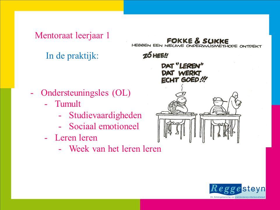 Ondersteuningsles (OL) Tumult Studievaardigheden Sociaal emotioneel