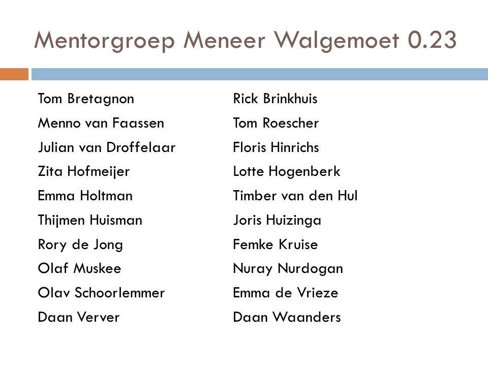 Mentorgroep Meneer Walgemoet 0.23