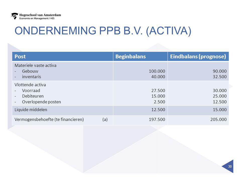 Onderneming ppb B.V. (activa)