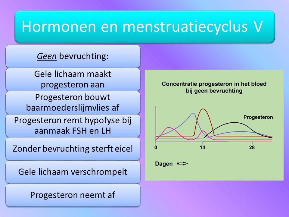 Gele lichaam maakt progesteron aan