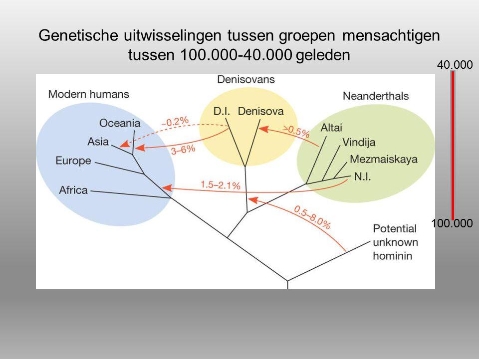 Genetische uitwisselingen tussen groepen mensachtigen tussen 100