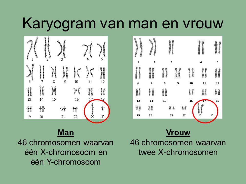 Karyogram van man en vrouw