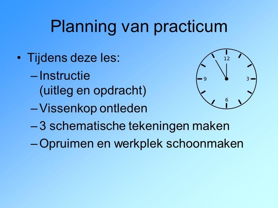Planning van practicum