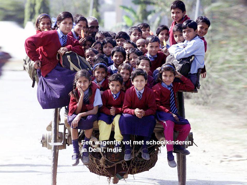 Een wagentje vol met schoolkinderen