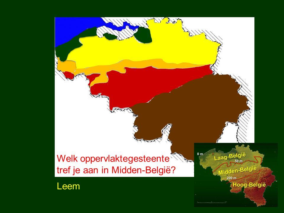 Welk oppervlaktegesteente tref je aan in Midden-België