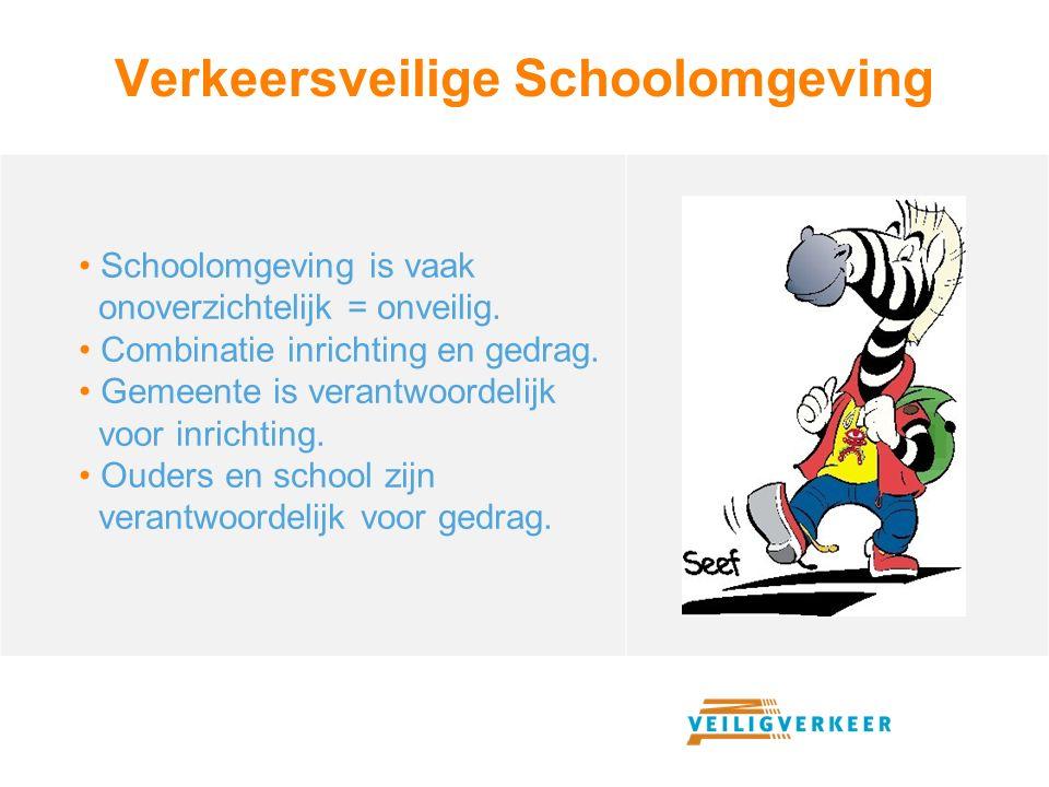 Verkeersveilige Schoolomgeving