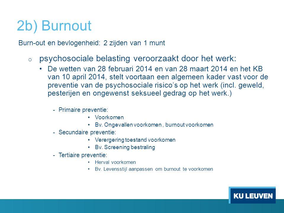 2b) Burnout psychosociale belasting veroorzaakt door het werk: