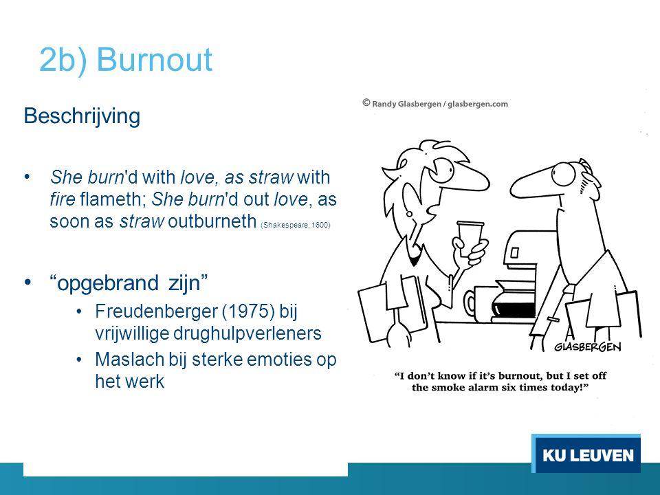 2b) Burnout Beschrijving opgebrand zijn
