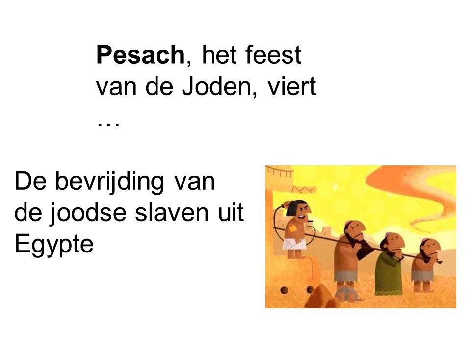 Pesach, het feest van de Joden, viert …