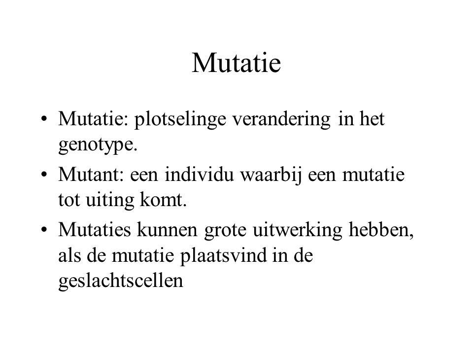 Mutatie Mutatie: plotselinge verandering in het genotype.