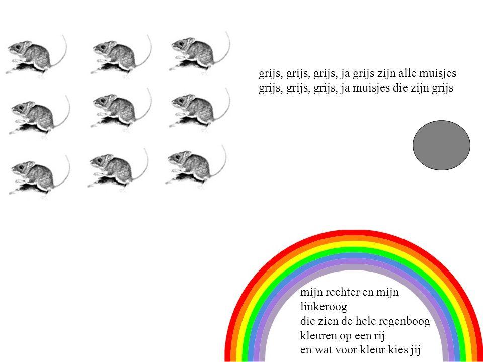 9 grijs, grijs, grijs, ja grijs zijn alle muisjes