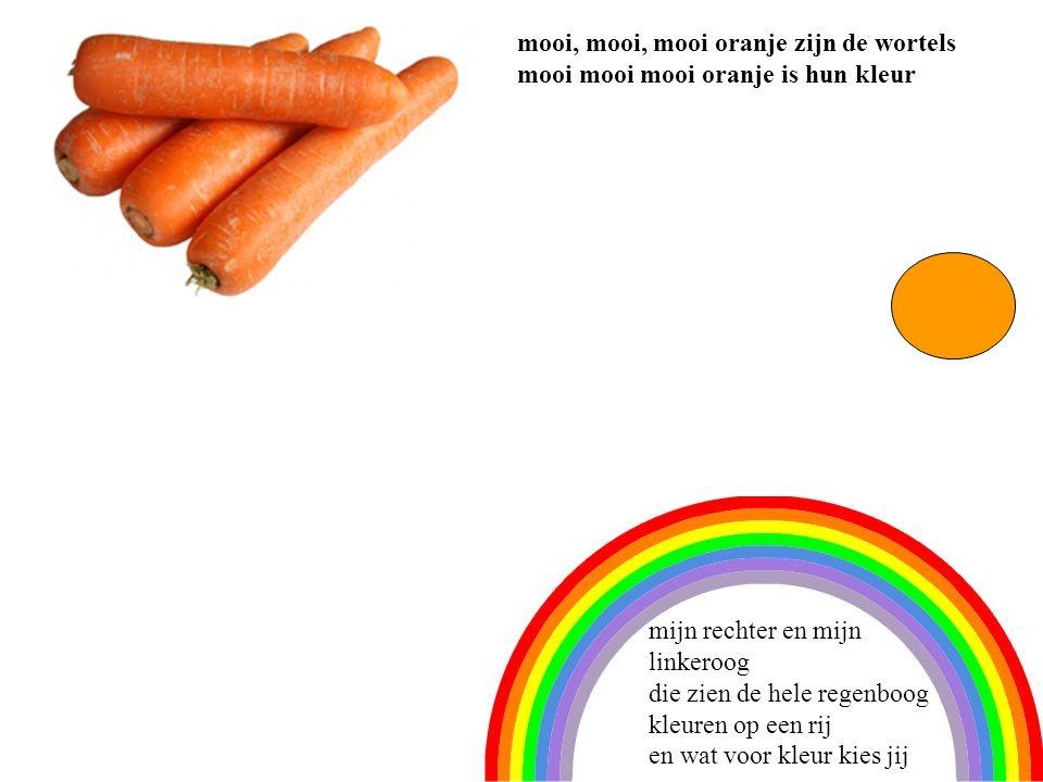 4 mooi, mooi, mooi oranje zijn de wortels