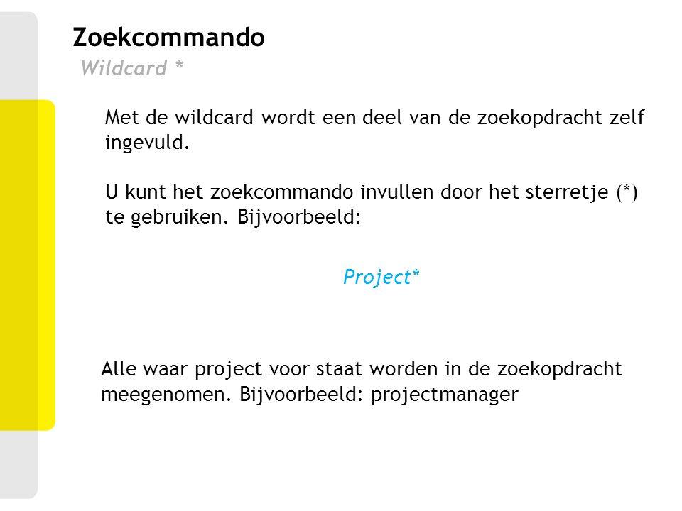 Zoekcommando Wildcard *