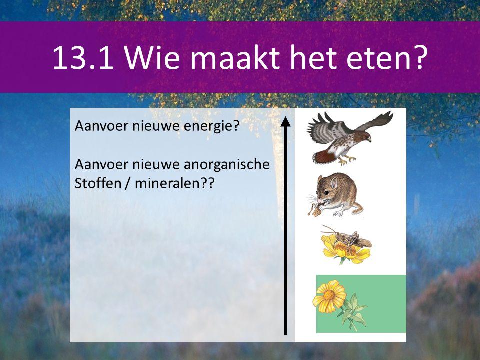 13.1 Wie maakt het eten Aanvoer nieuwe energie