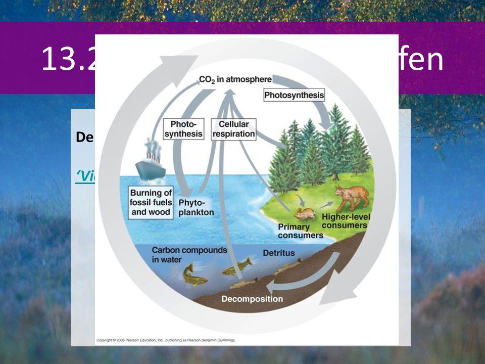 13.2 Doorgeven van stoffen De koolstofkringloop BINAS 93G (93B)