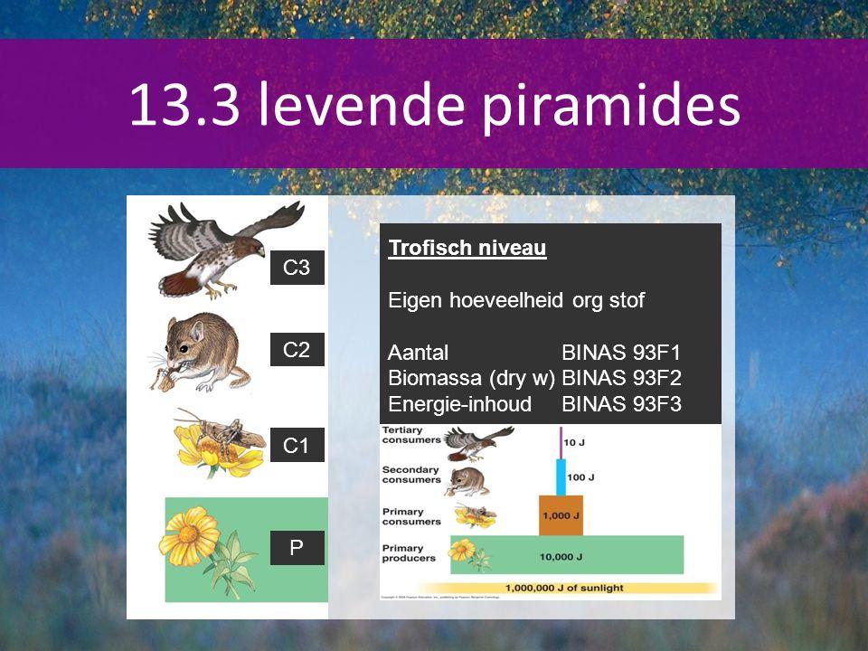 13.3 levende piramides Trofisch niveau C3 Eigen hoeveelheid org stof