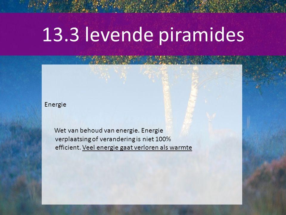 13.3 levende piramides Energie Wet van behoud van energie. Energie