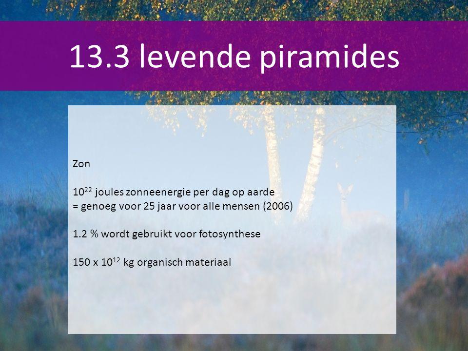 13.3 levende piramides Zon 1022 joules zonneenergie per dag op aarde