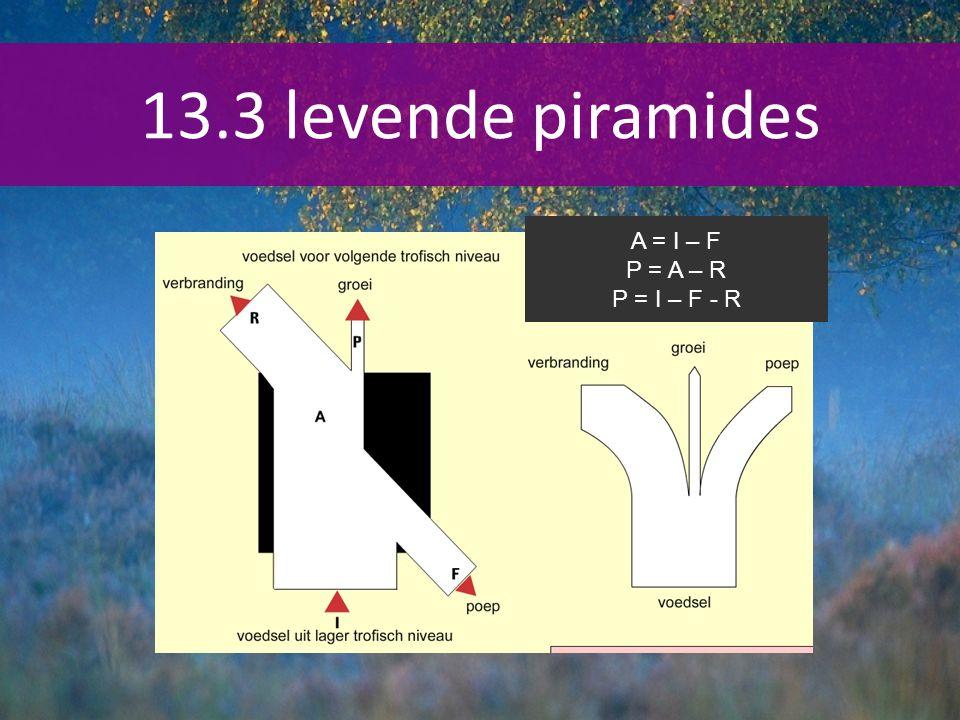13.3 levende piramides A = I – F P = A – R P = I – F - R