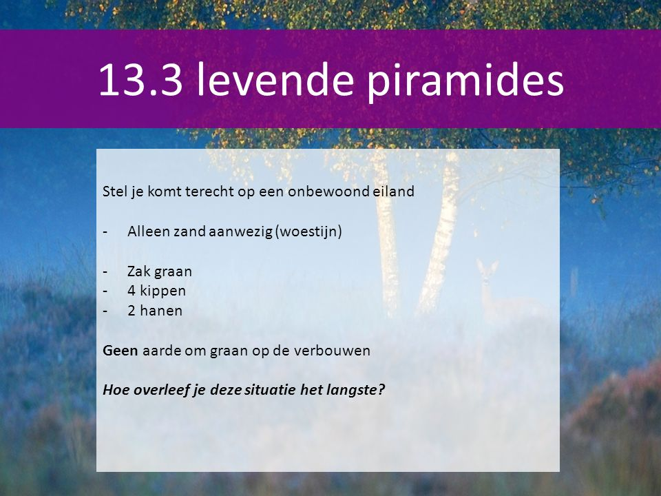 13.3 levende piramides Stel je komt terecht op een onbewoond eiland
