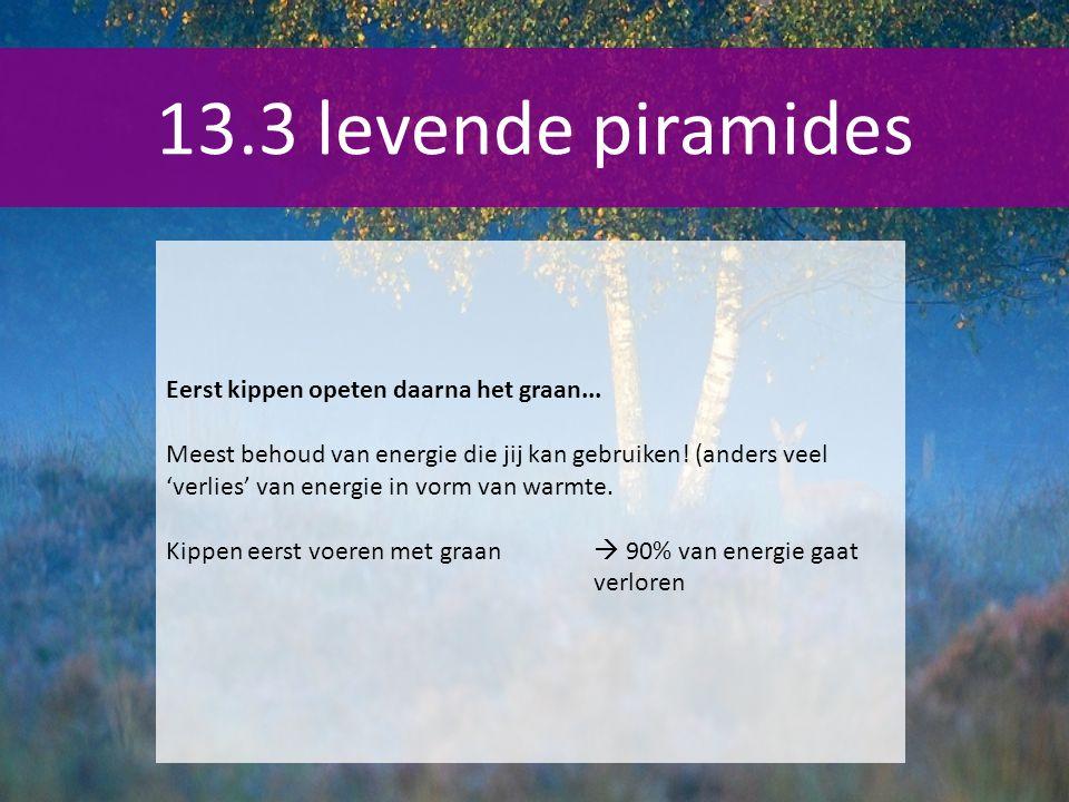 13.3 levende piramides Eerst kippen opeten daarna het graan...
