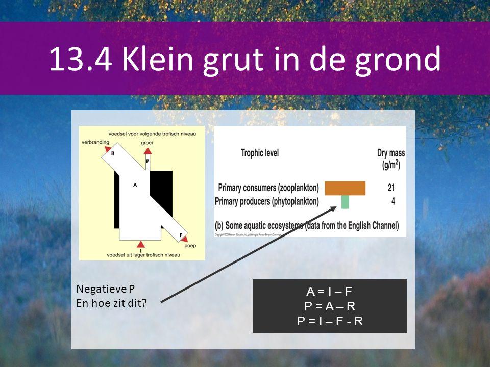 13.4 Klein grut in de grond Negatieve P En hoe zit dit A = I – F