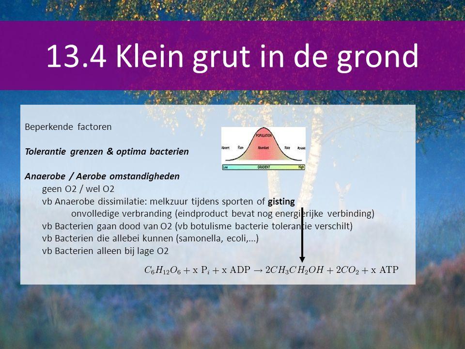 13.4 Klein grut in de grond Beperkende factoren