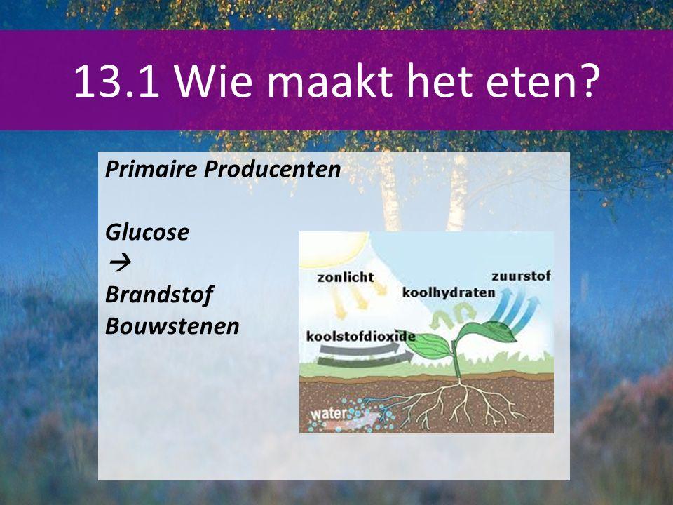 13.1 Wie maakt het eten Primaire Producenten Glucose  Brandstof
