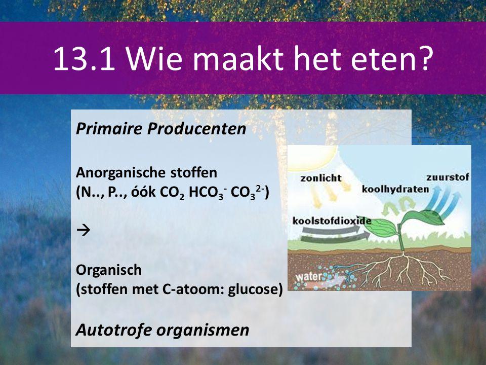 13.1 Wie maakt het eten Primaire Producenten Autotrofe organismen