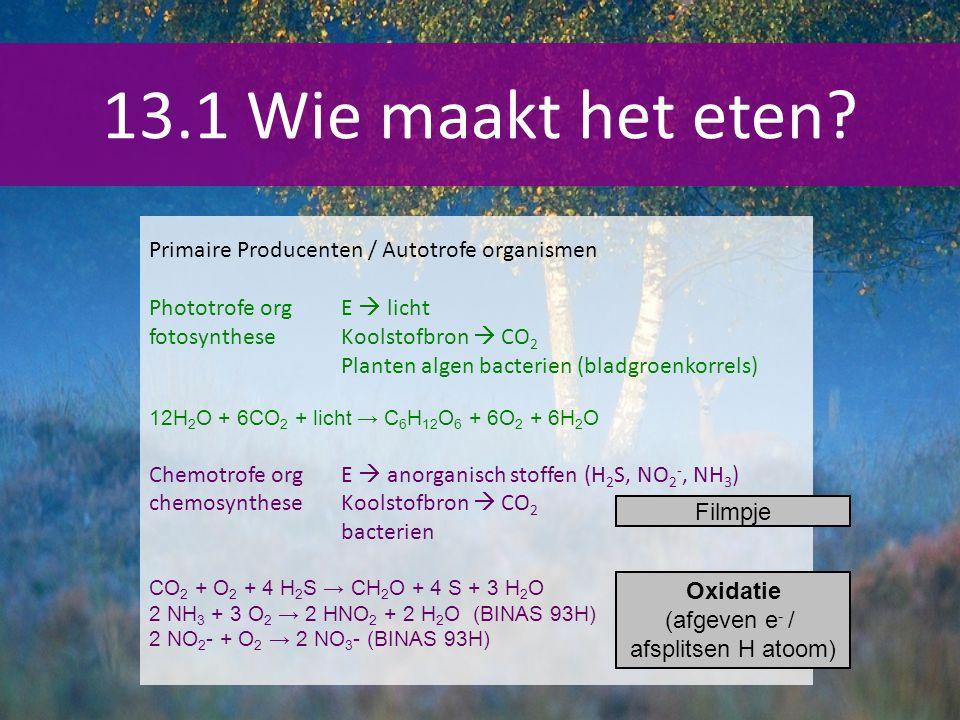13.1 Wie maakt het eten Primaire Producenten / Autotrofe organismen