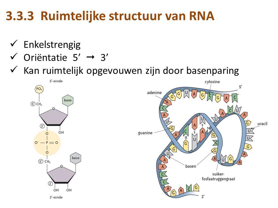 3.3.3 Ruimtelijke structuur van RNA