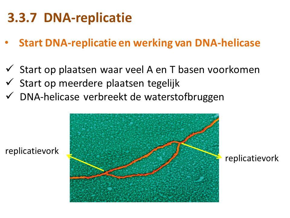 3.3.7 DNA-replicatie Start DNA-replicatie en werking van DNA-helicase