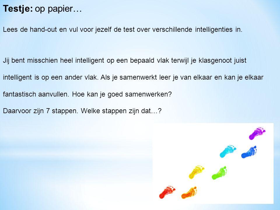Testje: op papier… Lees de hand-out en vul voor jezelf de test over verschillende intelligenties in.