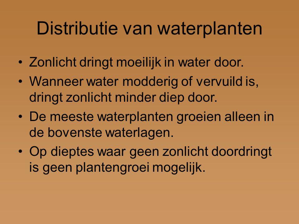 Distributie van waterplanten