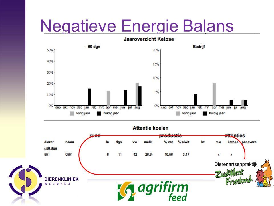 Negatieve Energie Balans