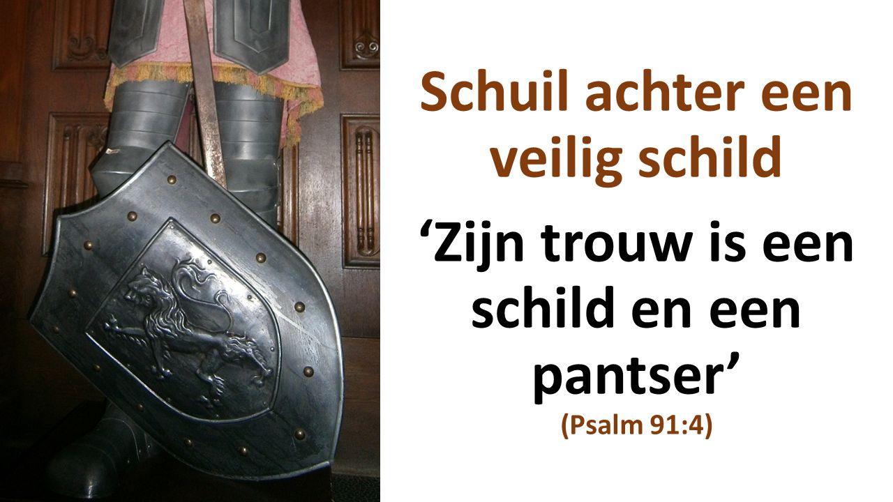 Schuil achter een veilig schild 'Zijn trouw is een schild en een pantser' (Psalm 91:4)