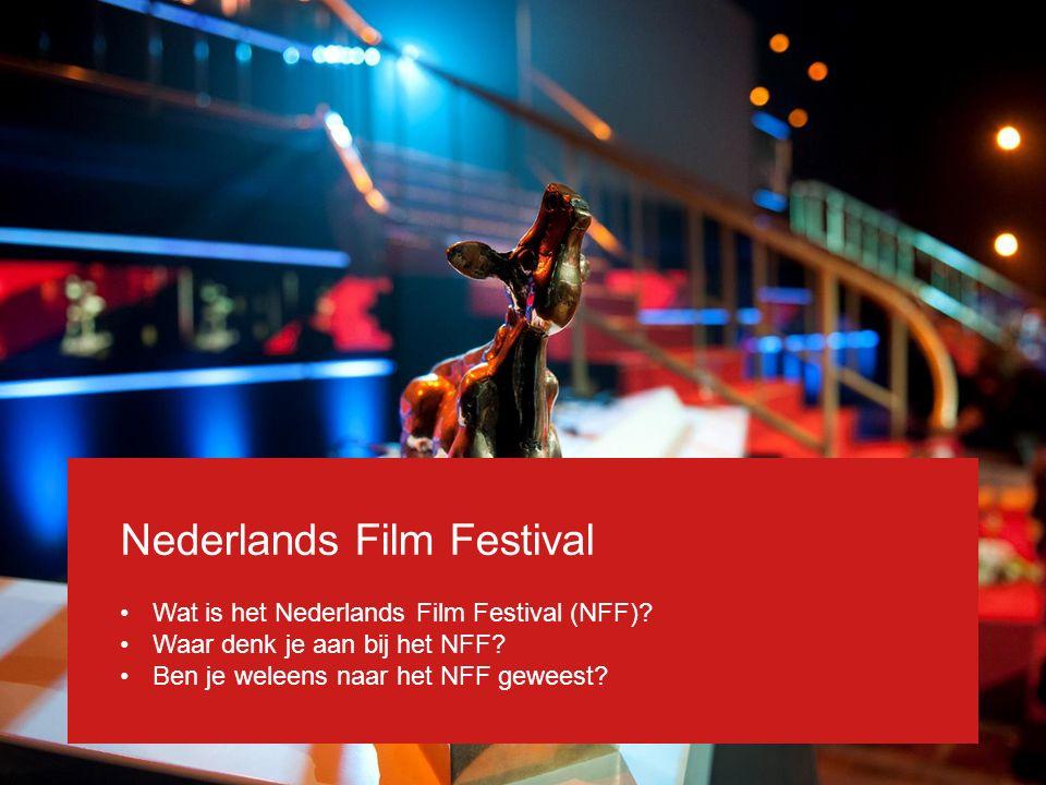 Nederlands Film Festival