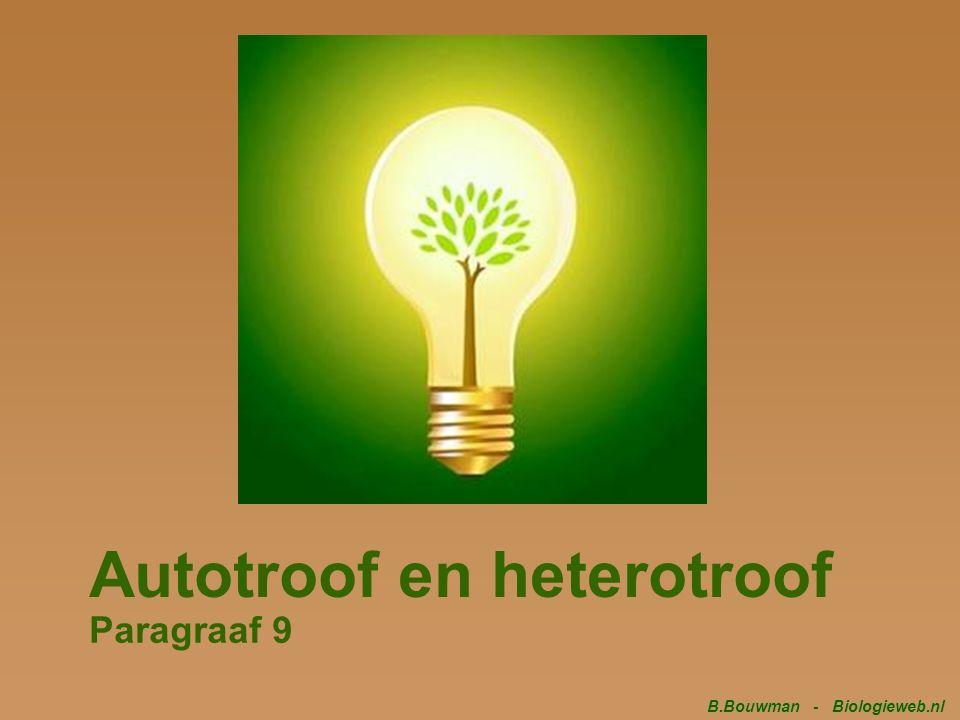 Autotroof en heterotroof