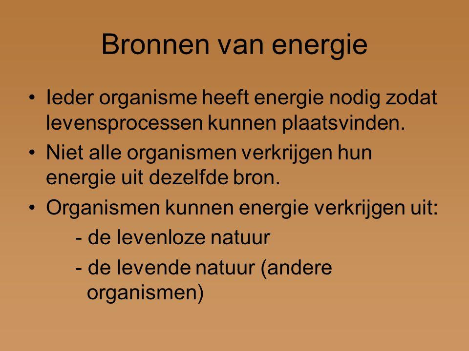 Bronnen van energie Ieder organisme heeft energie nodig zodat levensprocessen kunnen plaatsvinden.