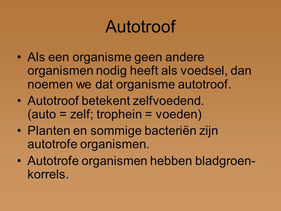 Autotroof Als een organisme geen andere organismen nodig heeft als voedsel, dan noemen we dat organisme autotroof.