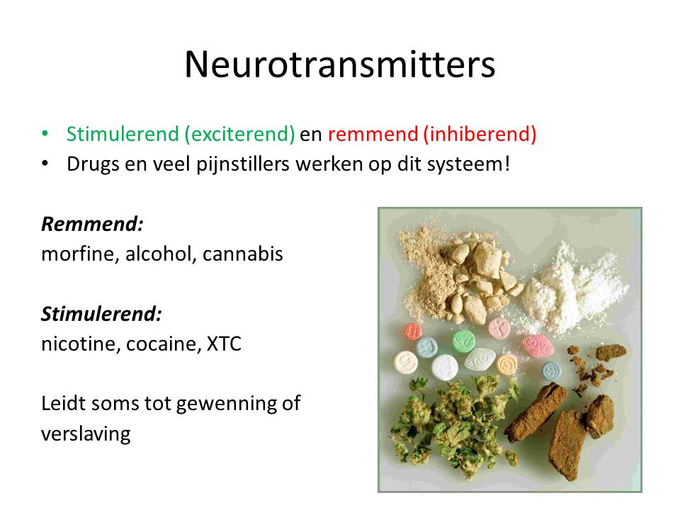 Neurotransmitters Stimulerend (exciterend) en remmend (inhiberend)
