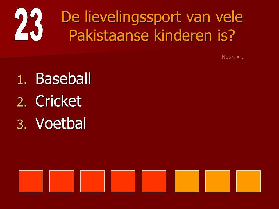 De lievelingssport van vele Pakistaanse kinderen is