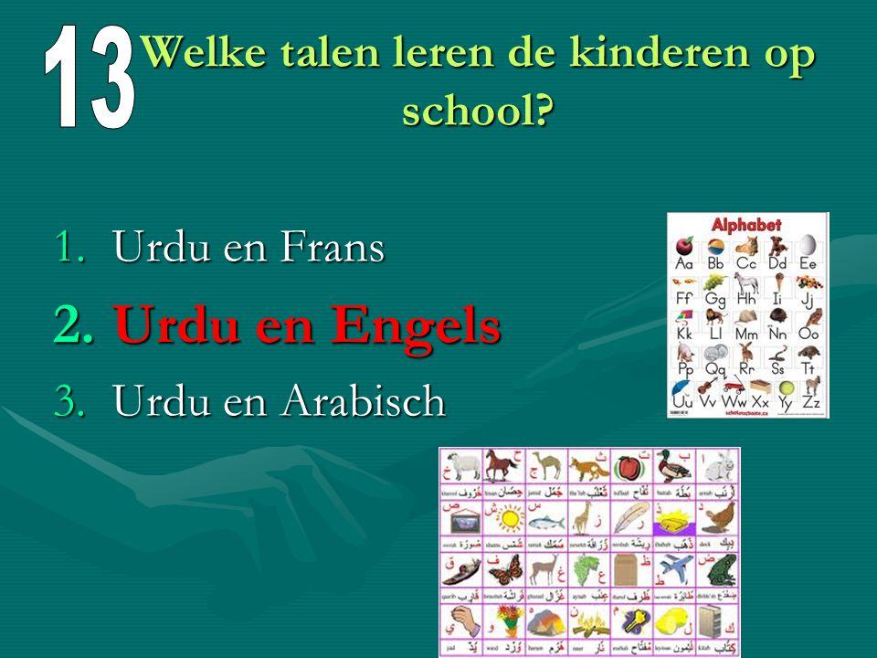 Welke talen leren de kinderen op school