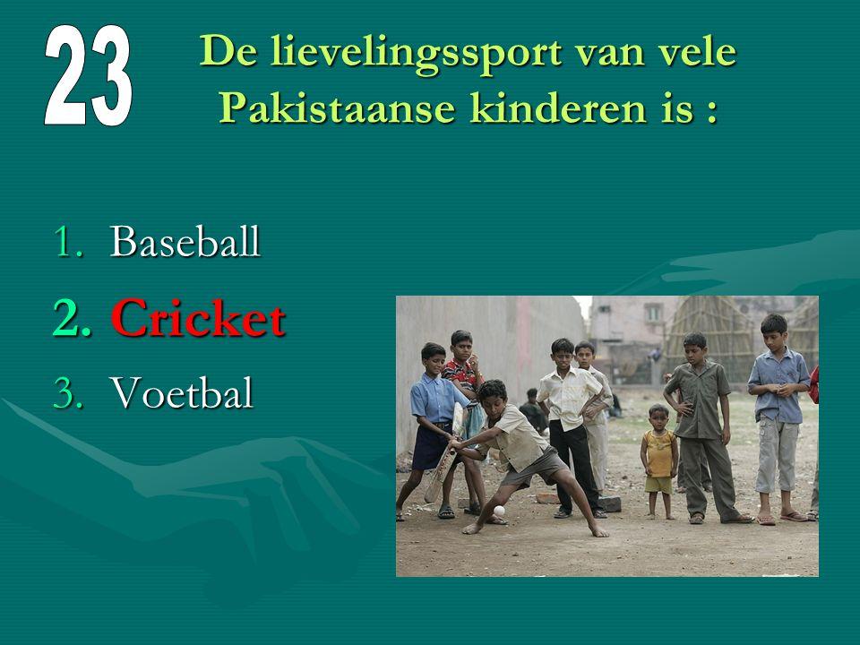 De lievelingssport van vele Pakistaanse kinderen is :