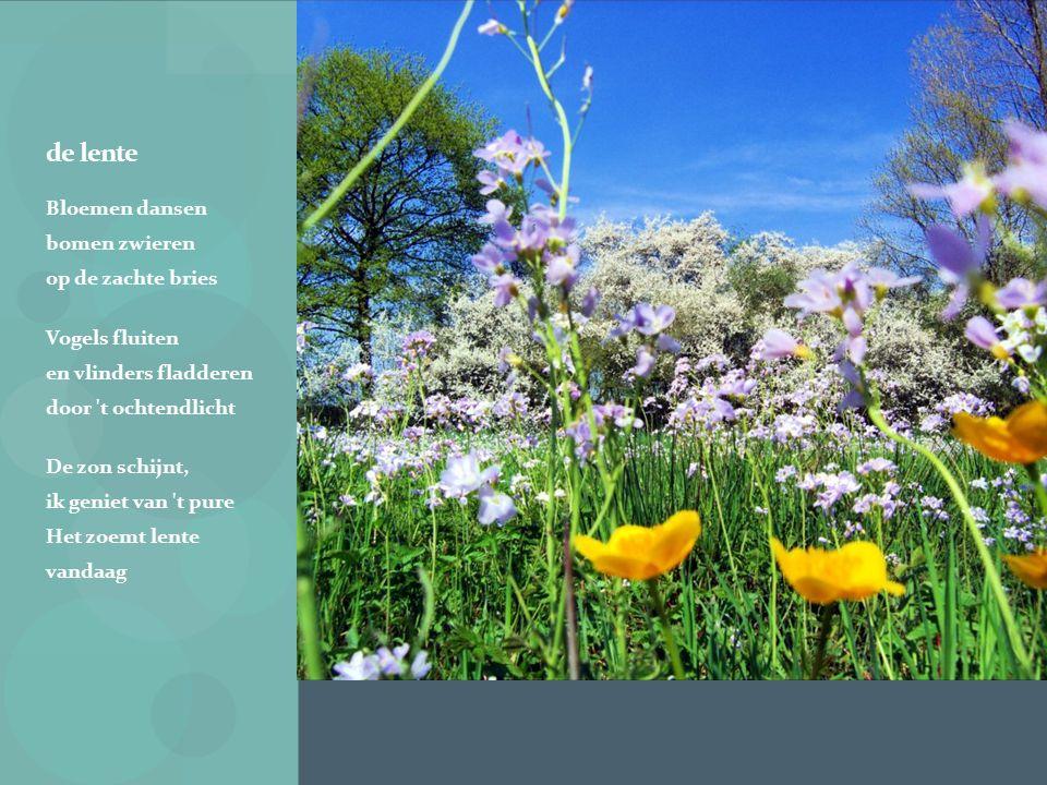 de lente Bloemen dansen bomen zwieren op de zachte bries