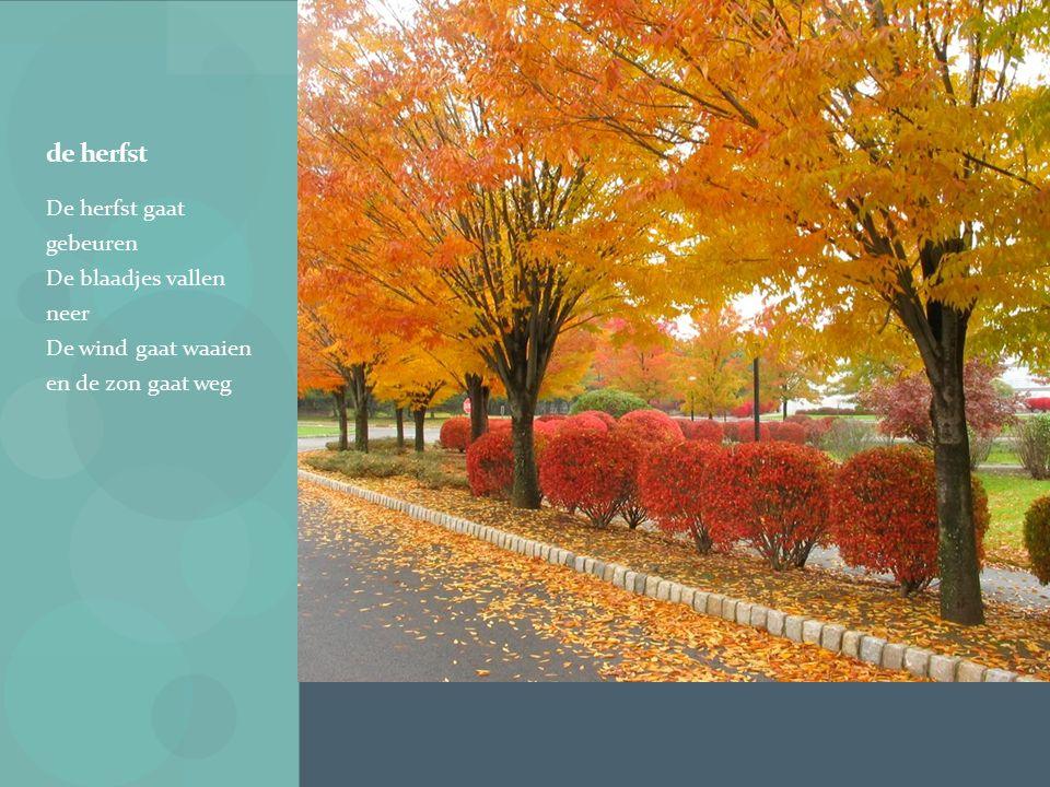 de herfst De herfst gaat gebeuren De blaadjes vallen neer De wind gaat waaien en de zon gaat weg.
