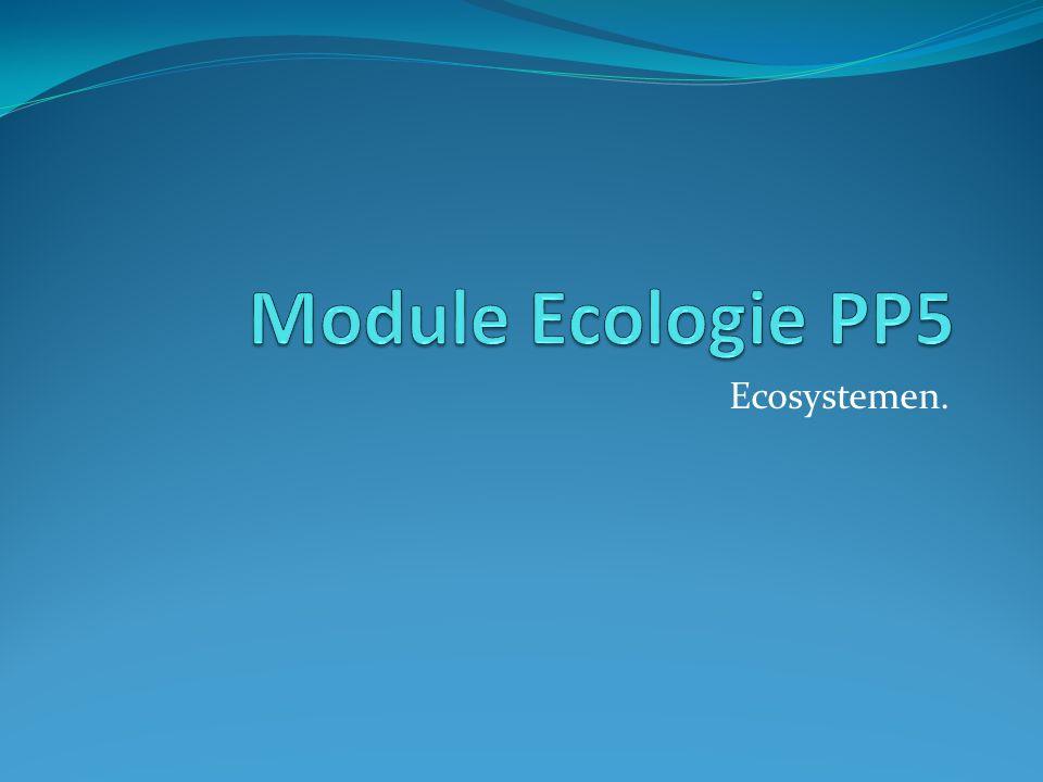 Module Ecologie PP5 Ecosystemen.